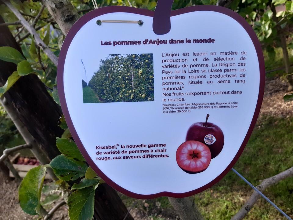 Terra Botanica 4