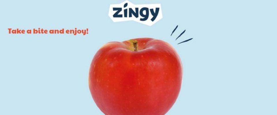 Zingy 2